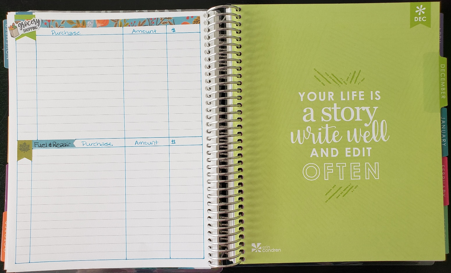 Expense Tracking for Erin Condren Deluxe Monthly Planner